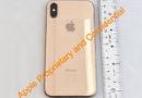 iPhone X si tingerà d'oro? La FCC pubblica le foto della versione Gold