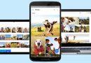 """Google Foto, la funzionalità """"Live Album"""" arriva anche su Android"""
