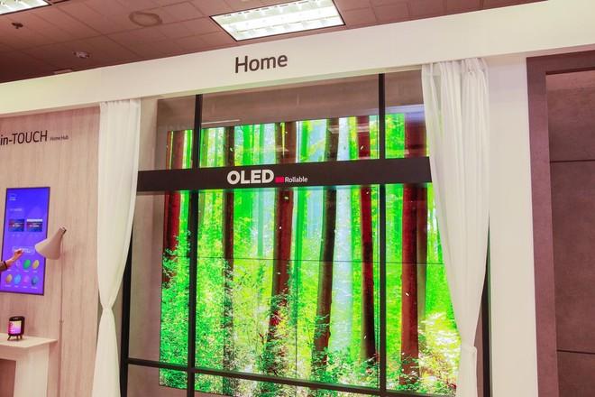 LG OLED schermo