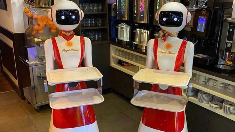 robot camerieri