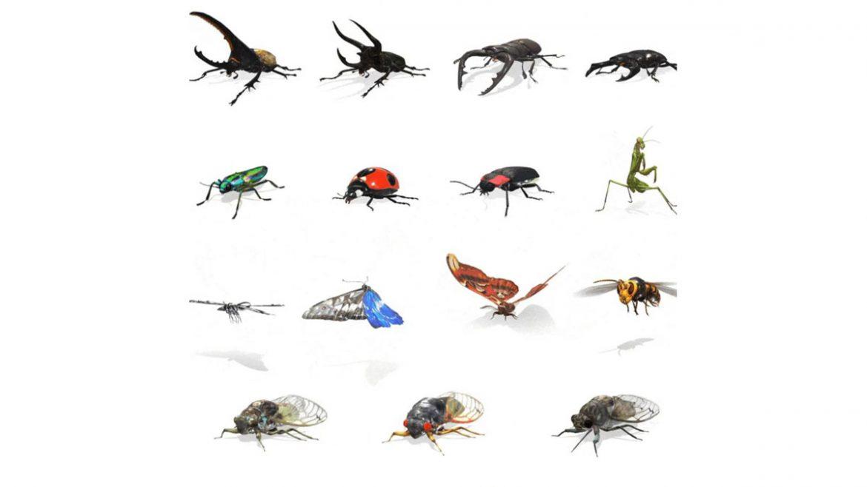 google insetti realtà aumentata