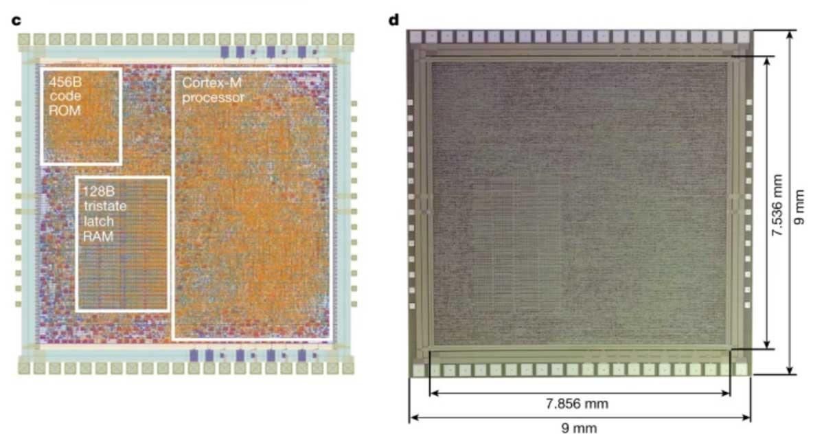 PlasticARM: arriva il primo processore ARM flessibile per l'IoT